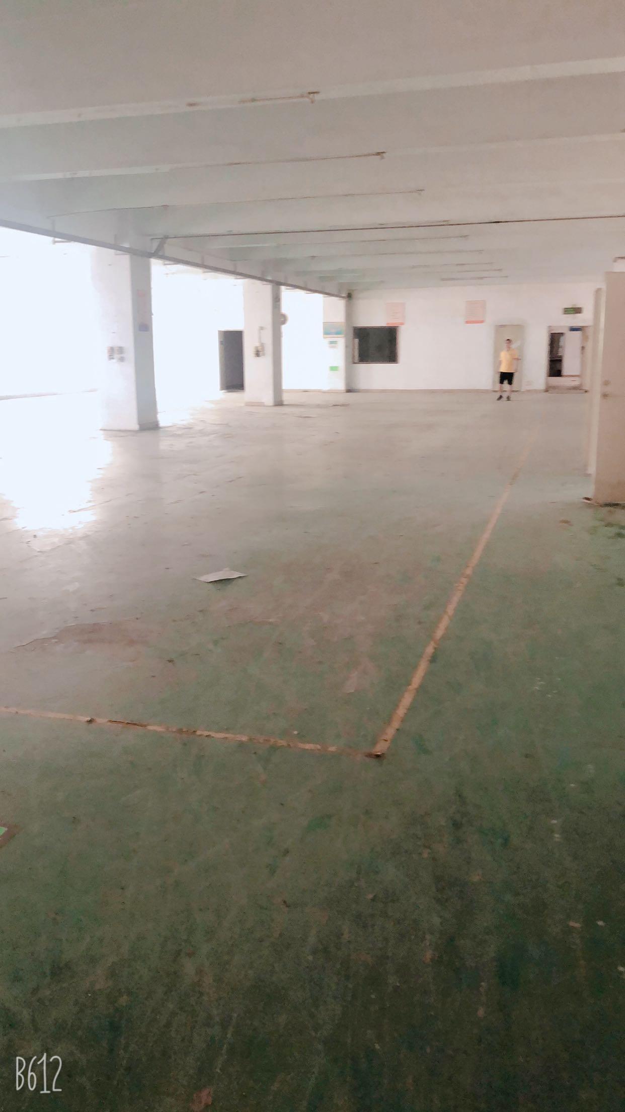 福永新空出8600平精装厂房-图2
