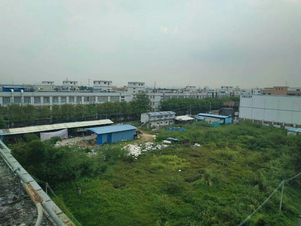 广东江门恩平市化化工指标土地出售