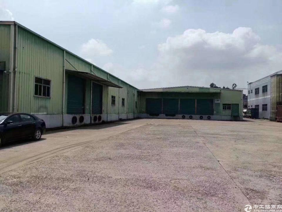 凤岗镇金凤凰带卸货平台的仓库出租,面积2200