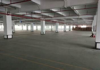 观澜桂花高速入口处新出花园式标准厂房4500平方出租!图片3