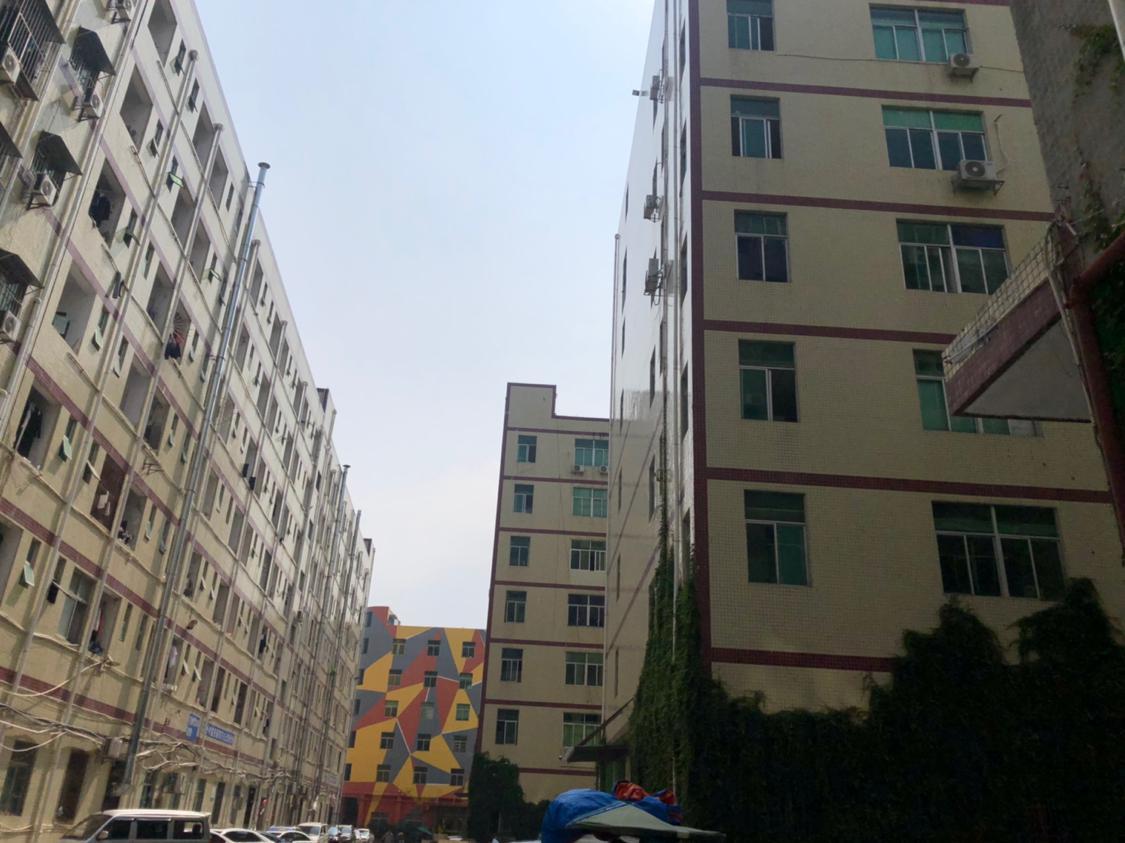 西乡固戍二路一楼350平仓库招租