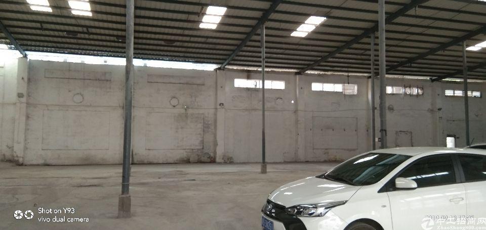 增城新塘单一层1500平方铁皮房出租证件齐全-图4
