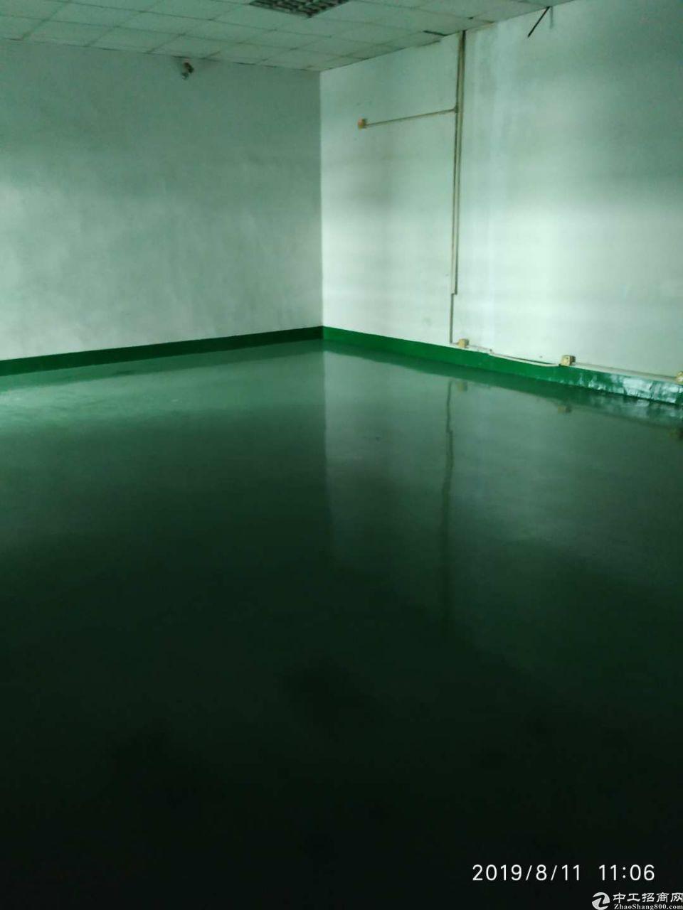 沙井新桥刷了地坪漆,带装修招租
