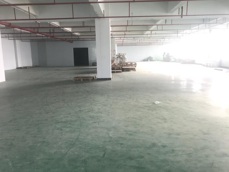 惠城区马安新出二楼1220平方带装修火爆招租