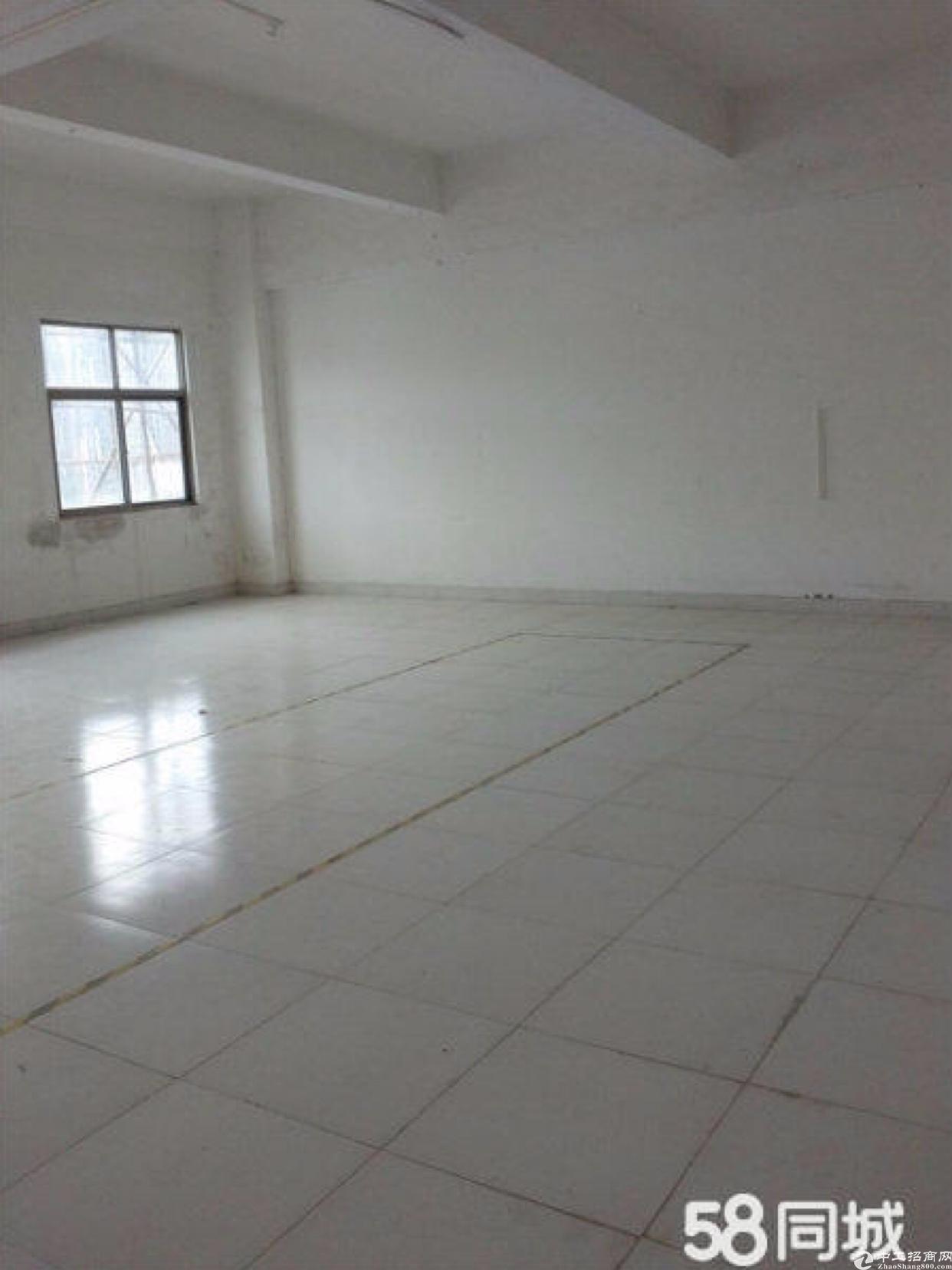 钟村雄峰城附近新出500平电商园厂房仓库