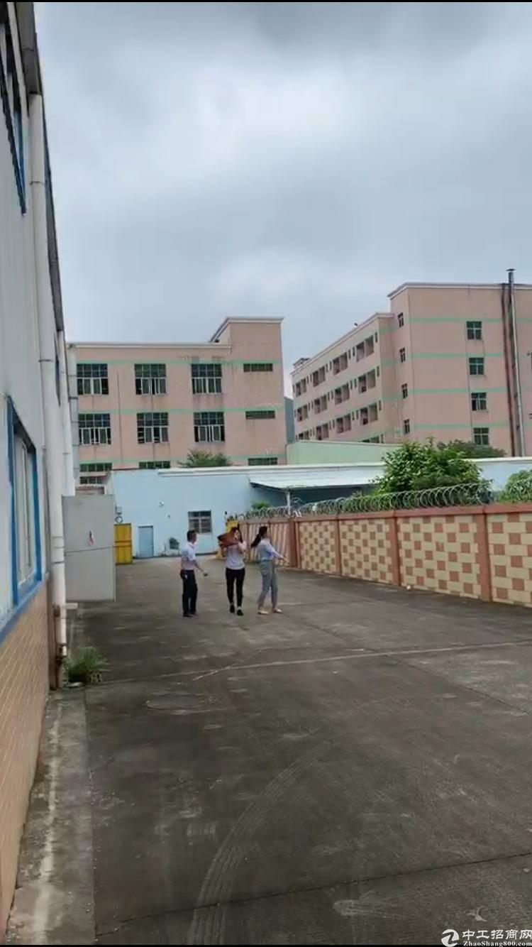 广州黄埔区占地4700平单一层8米2800平钢结构急售