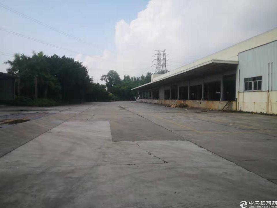 凤岗镇五联村新出原房东、单一层10米高物流仓库20000平