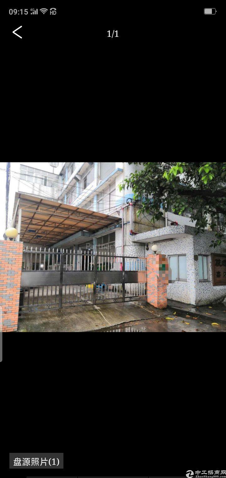 广州南沙少有小面积独院厂房出售