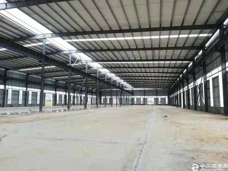 大渡口区标准厂房层高11.8米跨度24米长度100米标准钢结-图4