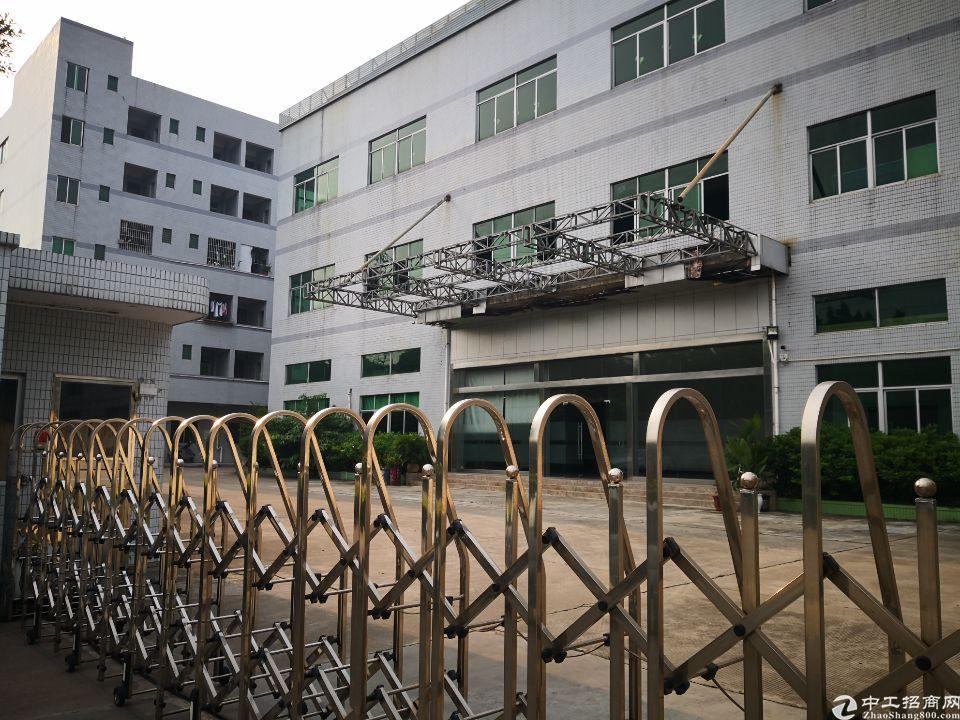 茶山镇新出标准厂房三楼1380平方招租