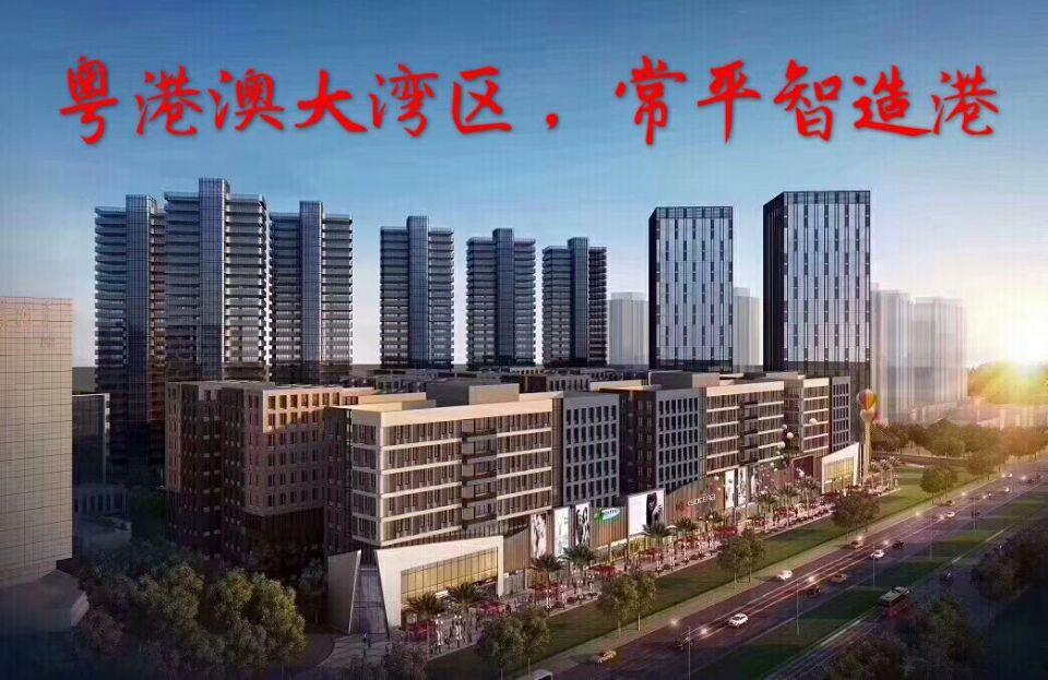 常平全新大型高新厂房楼上442平出售,首付50%