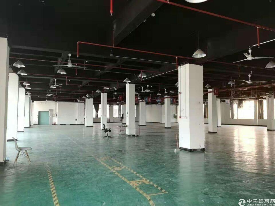 凤岗天堂围靠观澜二楼电商仓库1800平米出租