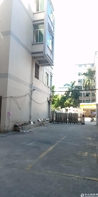 广州市增城区新塘镇标准带办公室厂房仓库出租