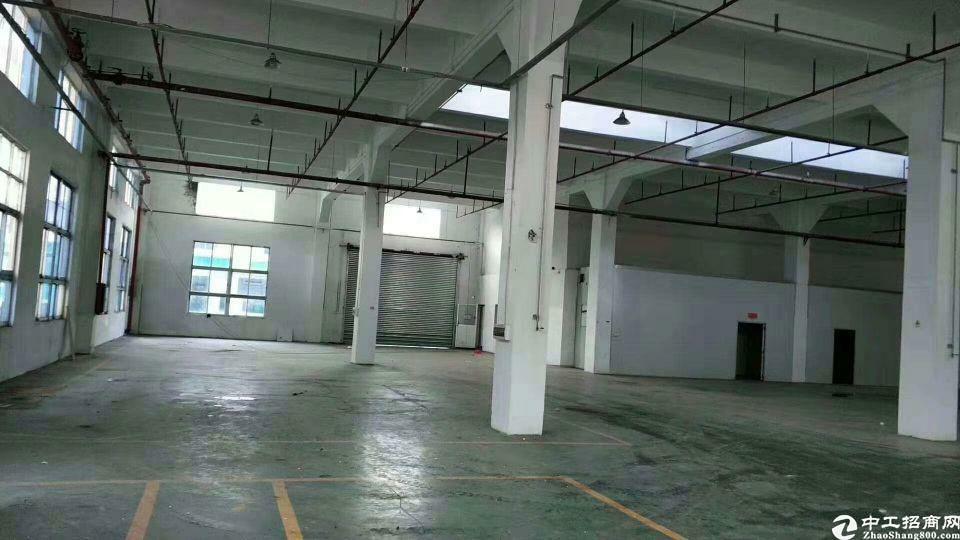 黄埔荔联超大空地2586平一楼标准钢构厂房招租(可分租)-图2