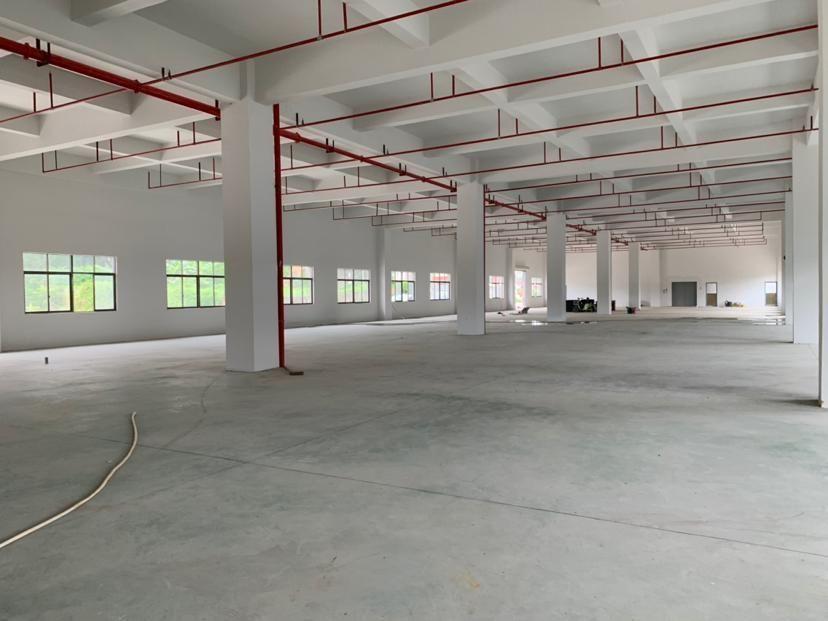 惠东白花工业园红本厂房分租一楼2600平