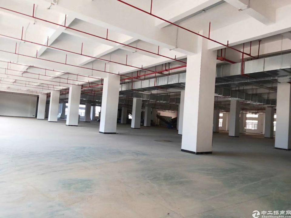 塘厦林村高速出口附近新出原房东厂房