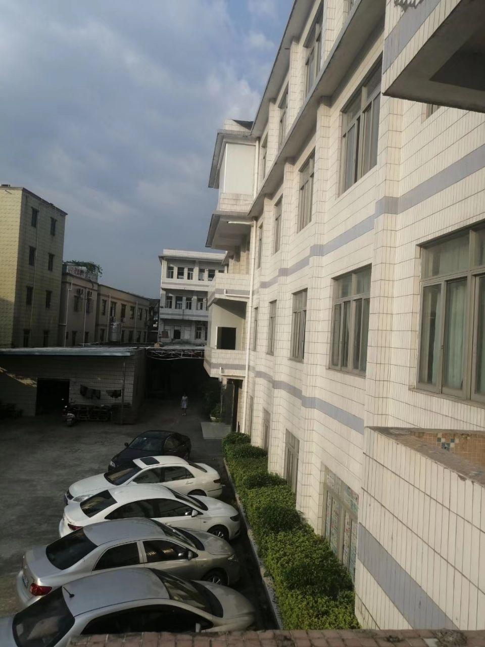 陈江镇新出标准厂房(中京路)