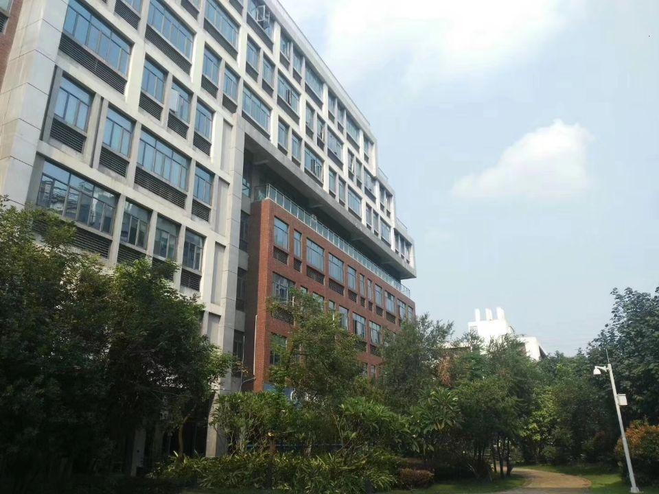 茶山镇新出标准厂房3楼1200方,带精装修,现成办公室