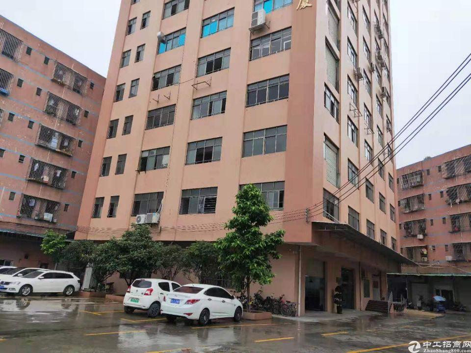 虎门靠近长安原房东独门独院厂房680平出租-图2
