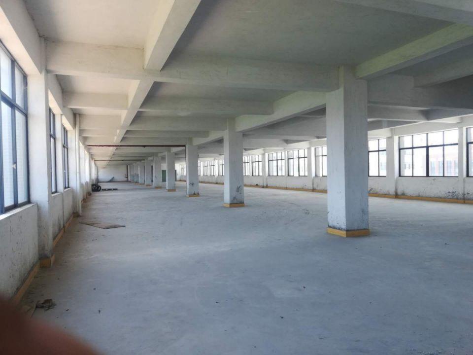 广州市增城区新塘镇标准带办公室厂房仓库出租-图3