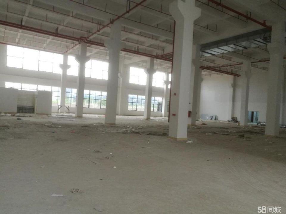 惠阳镇隆原房东出租独栋标准厂房10600平方