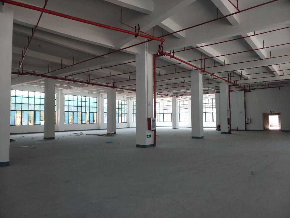 惠州市惠阳区镇隆镇标准厂房2800平方招租