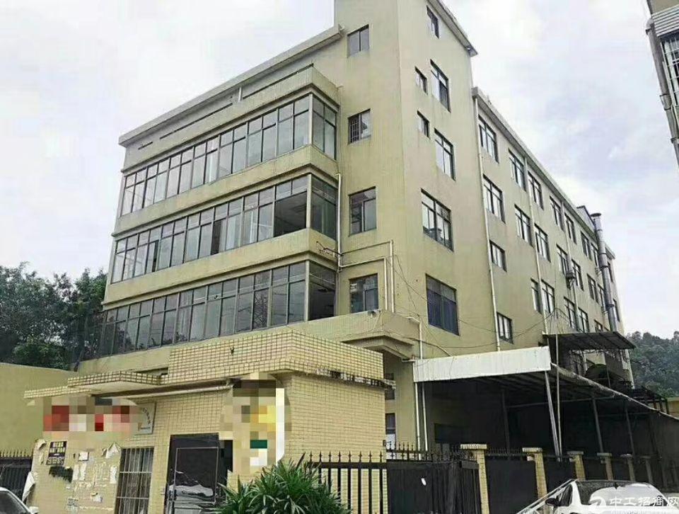广州番禺超值独院厂房出售