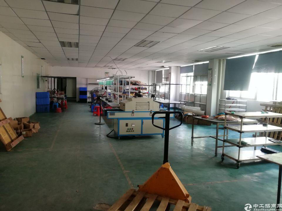 惠州陈江镇新出标准楼上带装修厂房1570平方