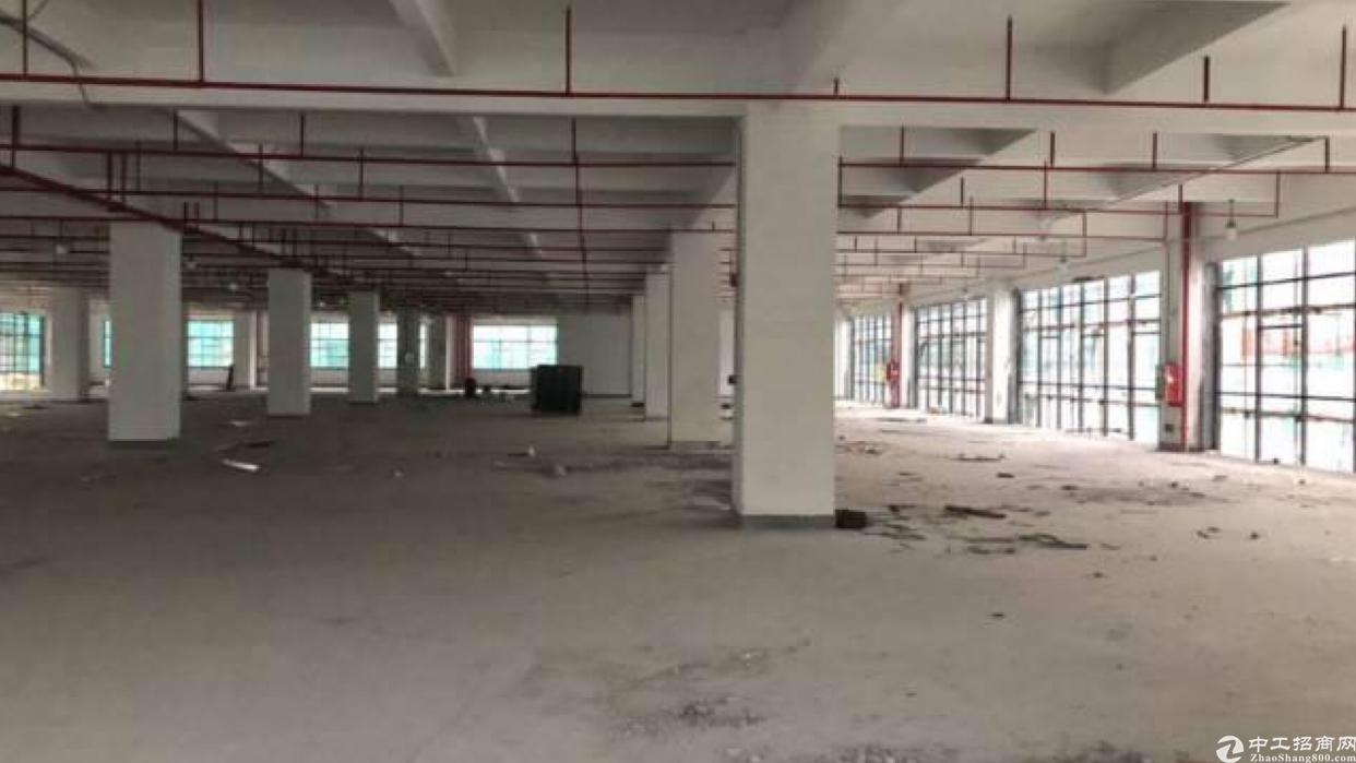 龙岗横岗电商仓库招租7300平方米可分租