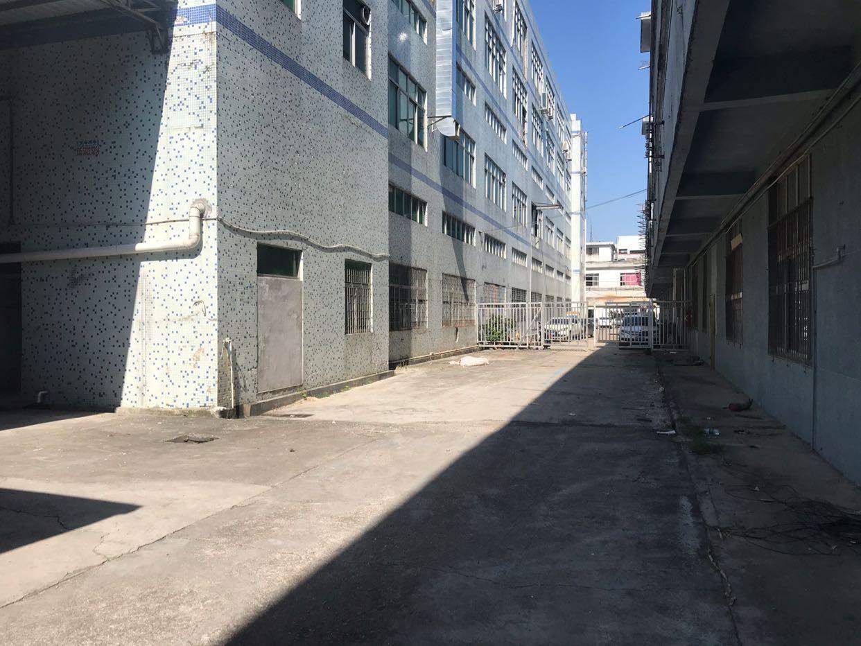 清溪镇三中新出标准厂房一楼2500平方出租一楼7米高带装修
