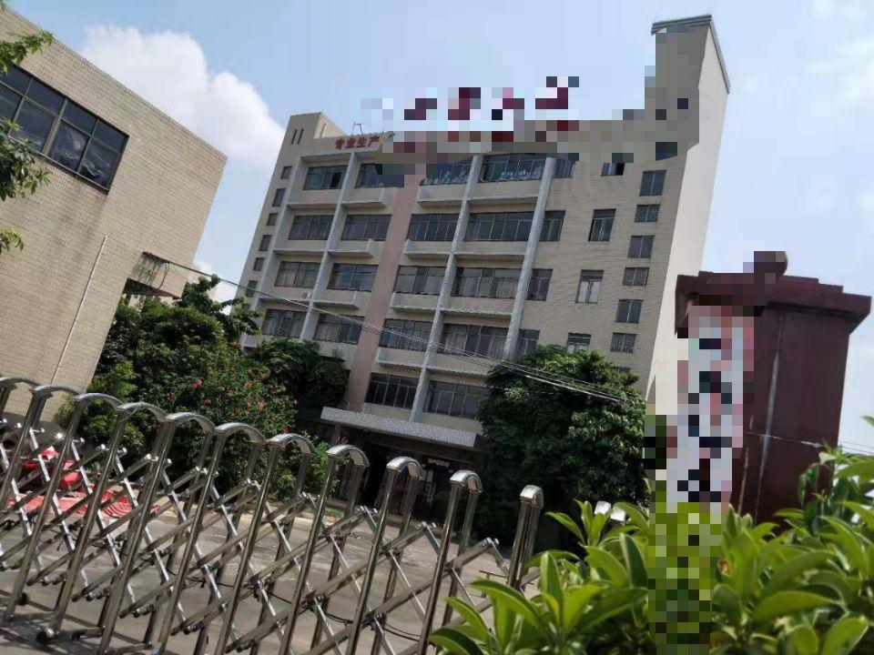 广州番禺成熟工业区国有双证厂房6303㎡出售形象好