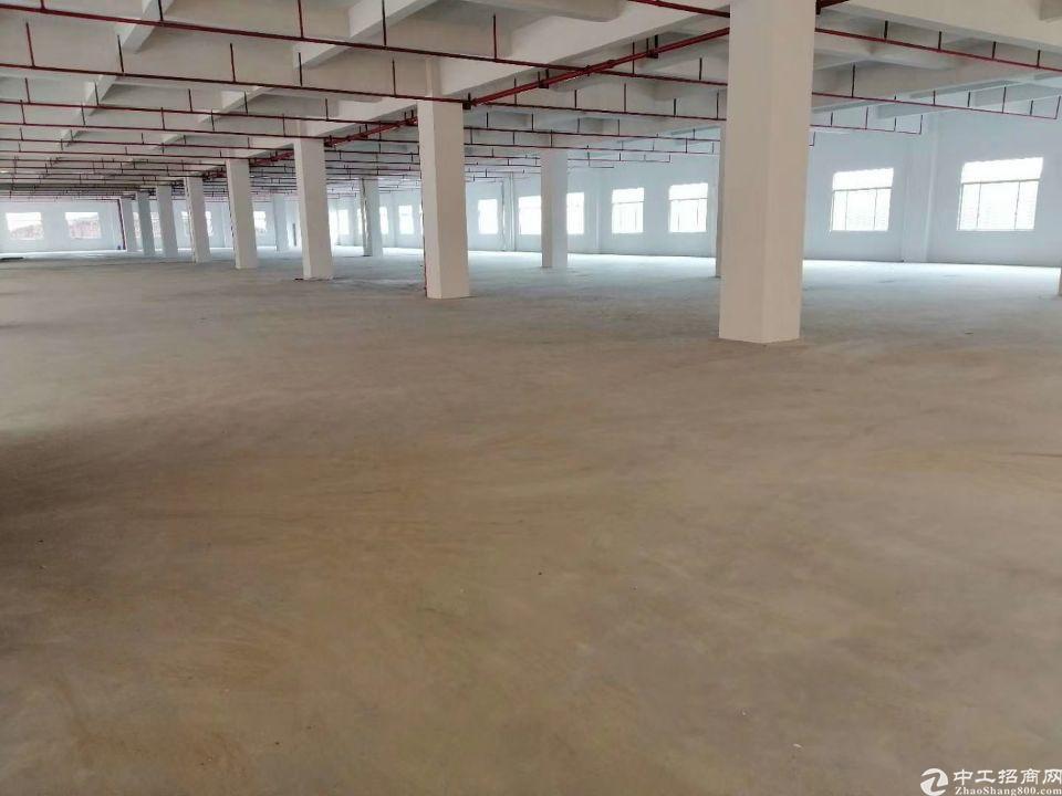 东莞市桥头镇靠近东深路附近新出全新独院标准厂房23000平米-图3