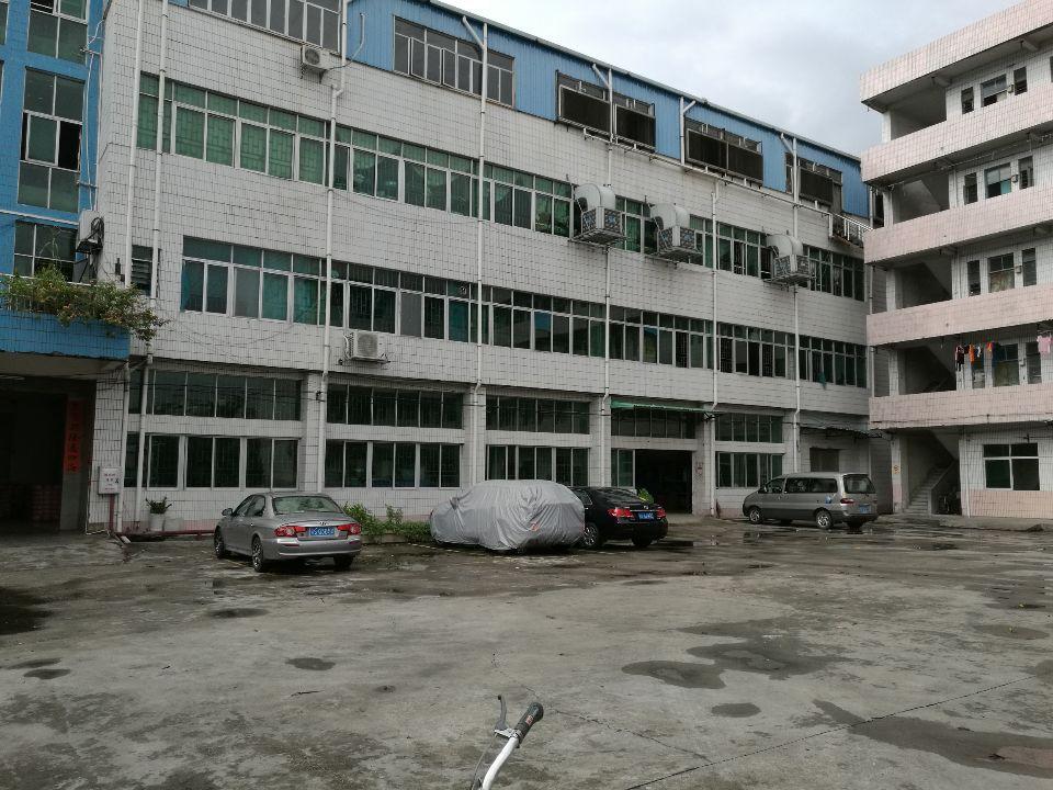 茶山镇独院标准厂房分租一楼1700平方厂房