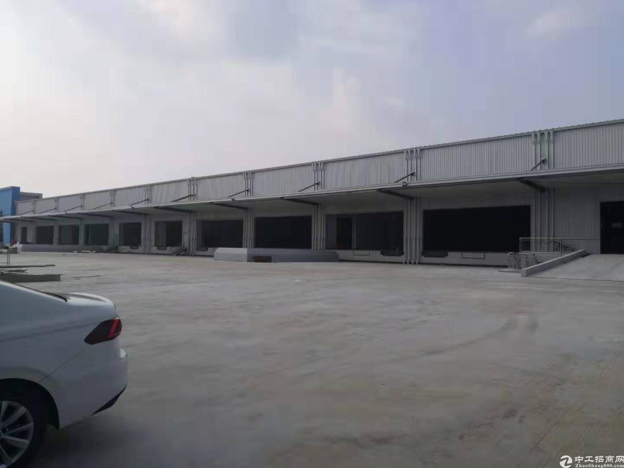 大岭山标准高台物流仓库40000平出租