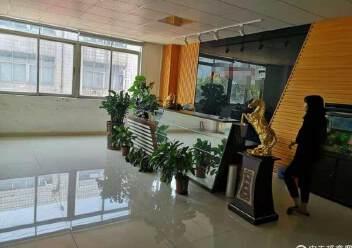 福永新和1300平一整层带装修厂房出租图片2