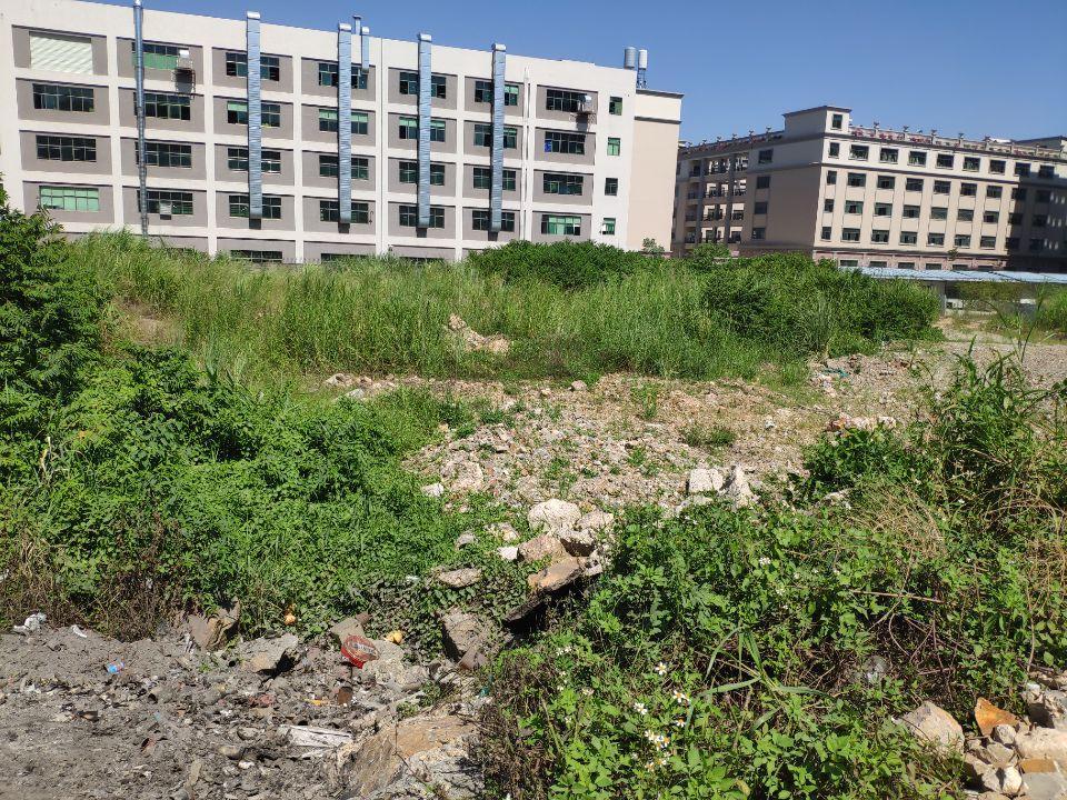 惠阳沙田占地28500,建筑17000 国有双证厂房出售