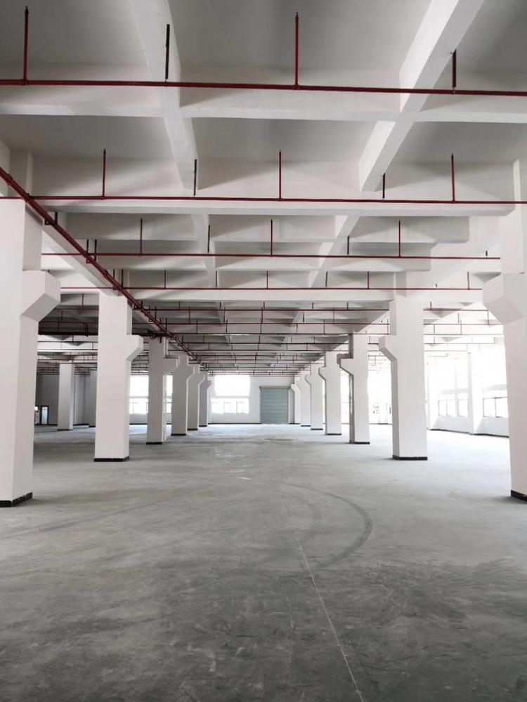 工业区标准一楼3000平方招租
