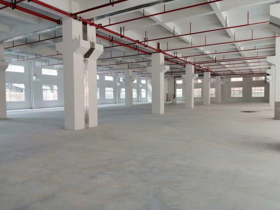 东莞市桥头镇靠近东深路附近新出全新独院标准厂房23000平米