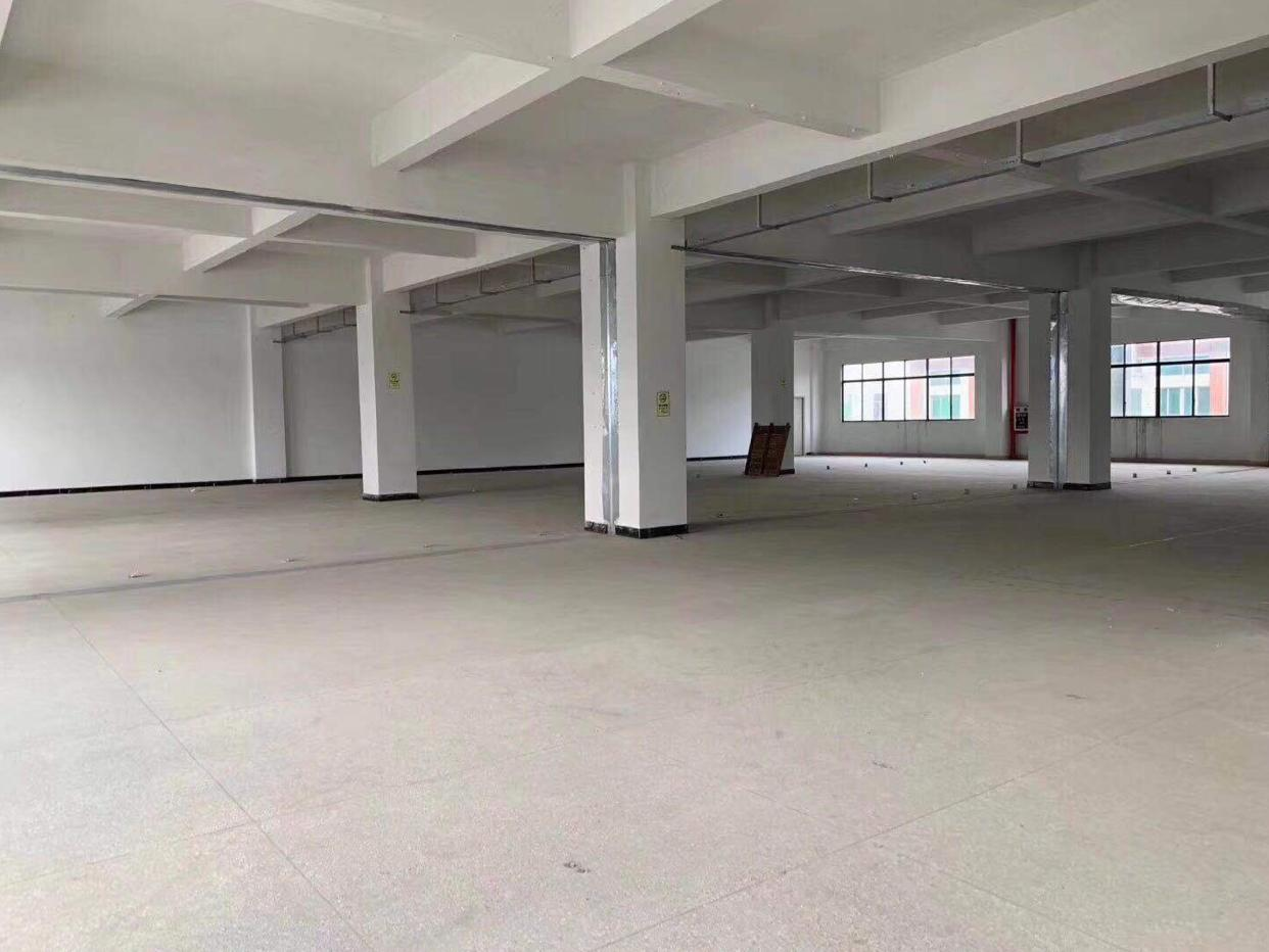 塘厦138工业区精品独门独院厂房带办公室装修主线已到车间