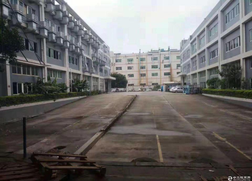 番禺区兴南大道边上新出楼上1300平标准厂房出租