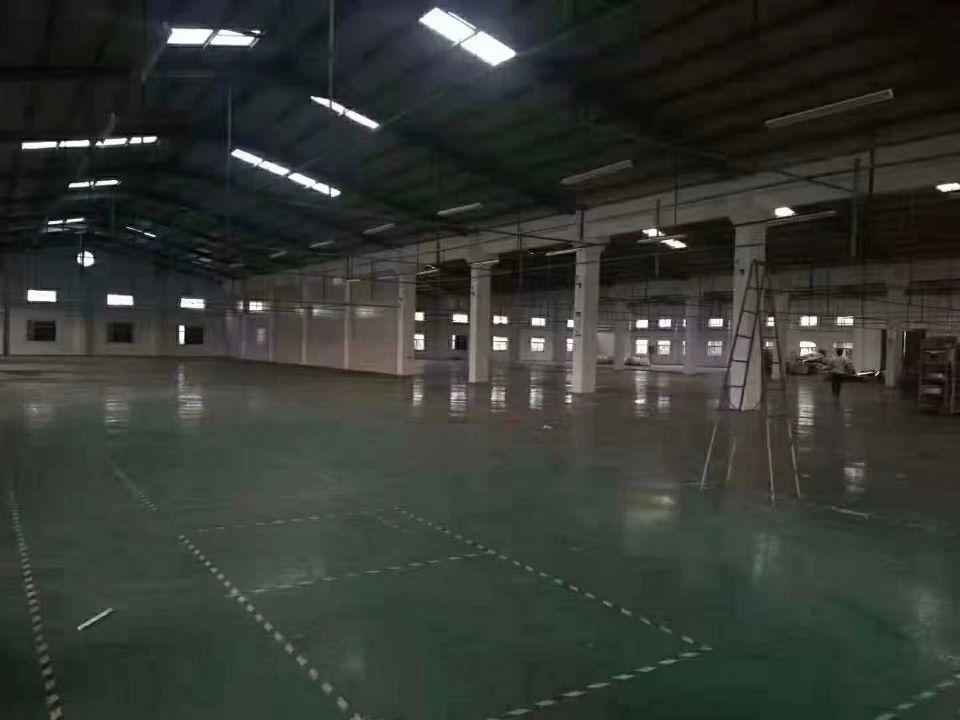 新出独院钢结构厂房10500平方出售
