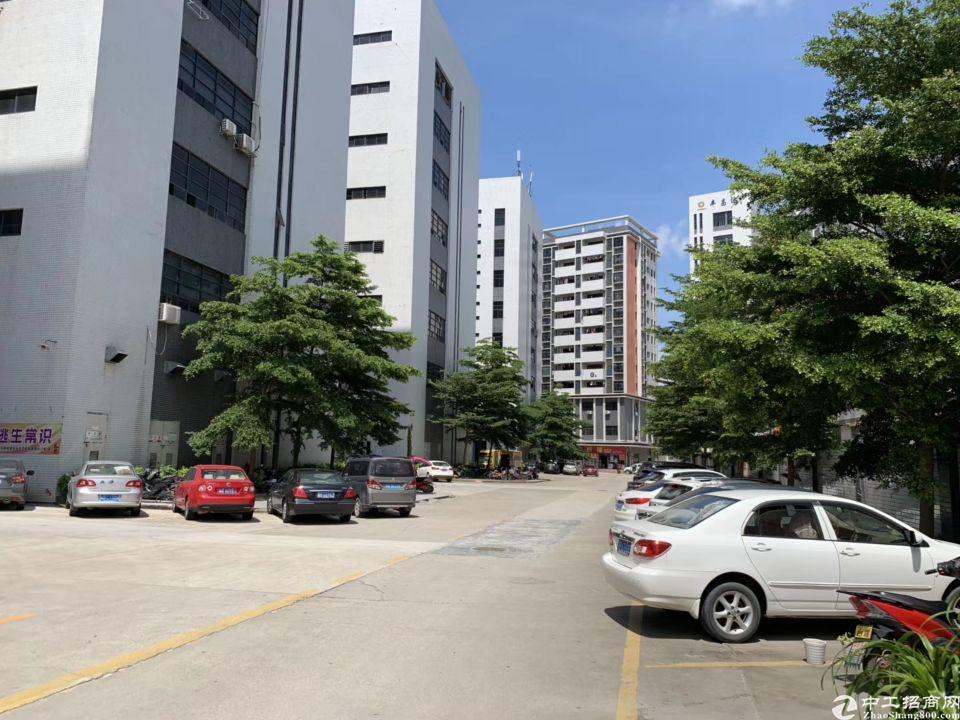 松岗塘下涌工业区楼上整层2000平方厂房招租豪华装修