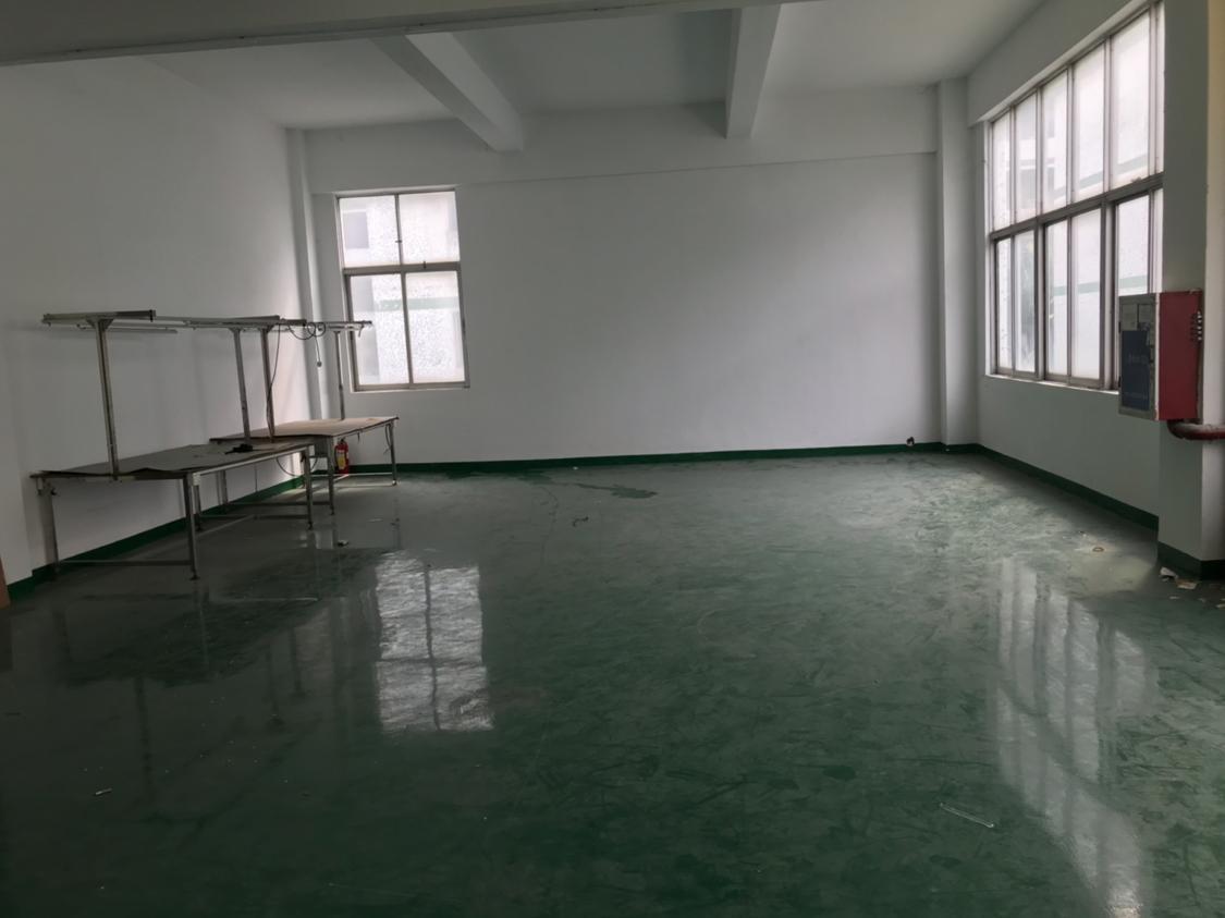 福永凤凰新出楼上带装修厂房带前台仓库办公室无需转让费