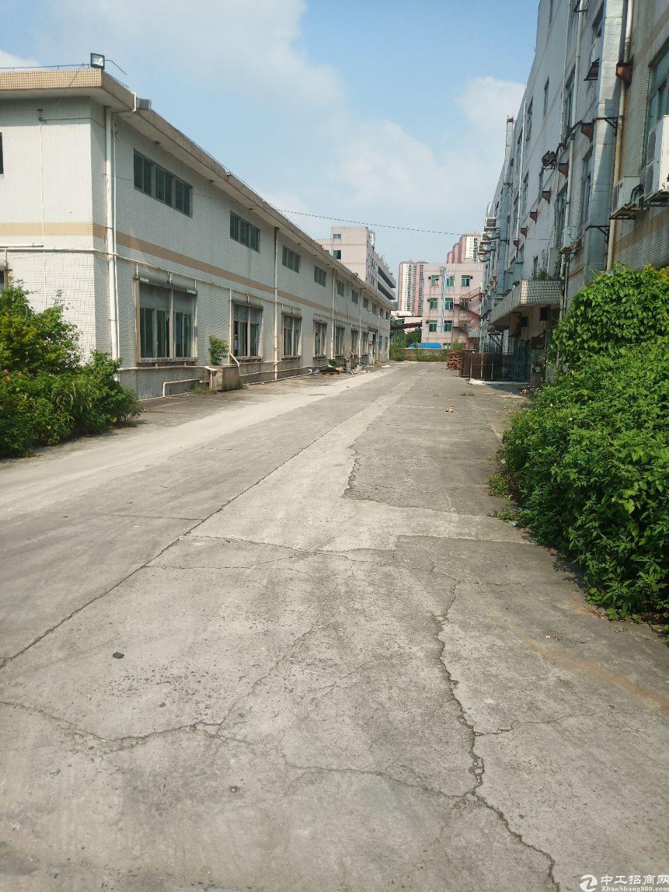 平湖海吉星食品厂房1000平方米一楼物流仓库出租,