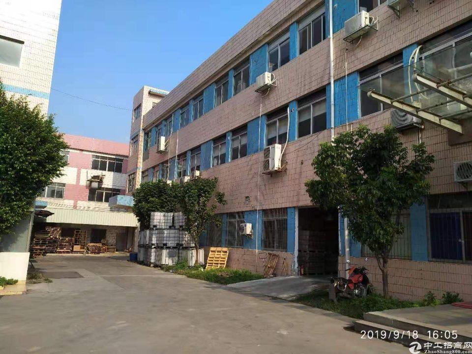 虎门大宁园区分租3楼2500平方,精装修办公室,拎包入驻