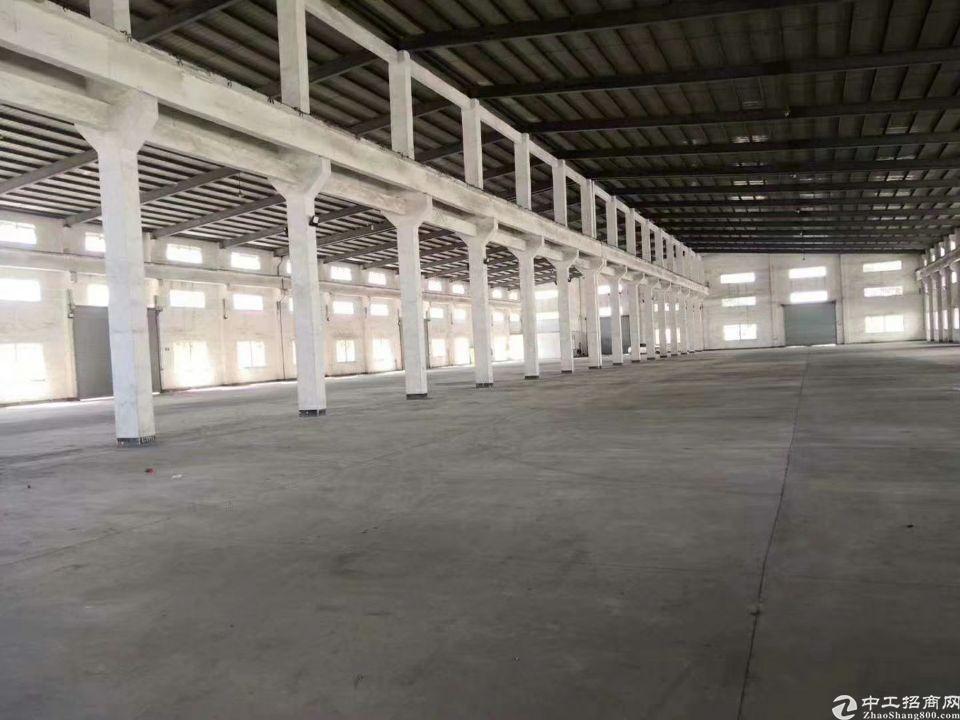 东莞洪梅镇25000平方单一层厂房