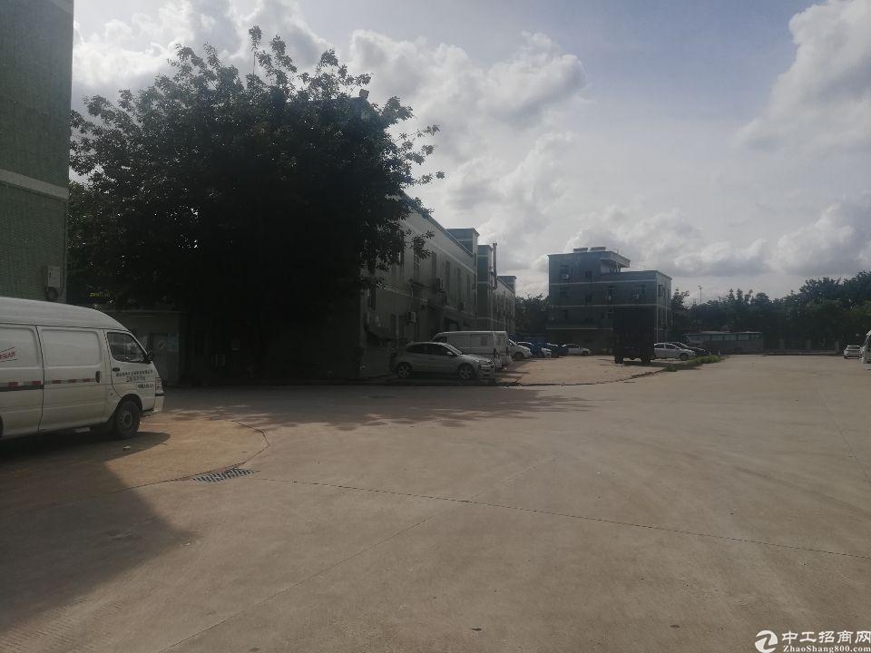 坪山大工业区新出办公仓库厂房430平方出租,空地大好进车
