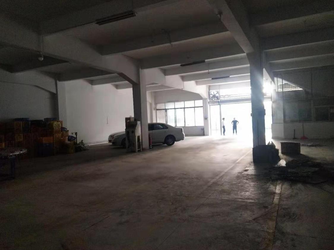 广州南站附近新出标准一楼1000方可分租厂房