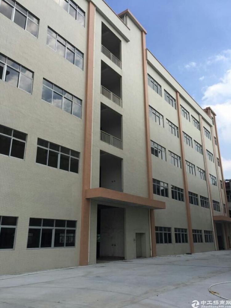 全新独门独院标准厂房1到5层12250平方