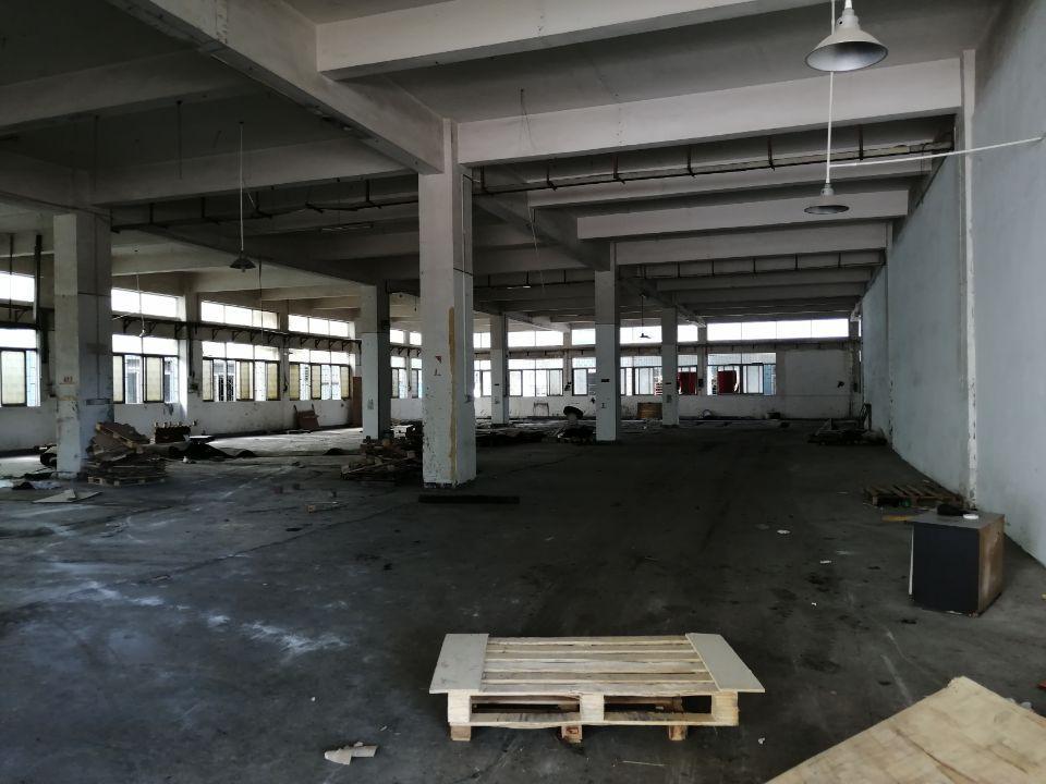 万江新和新出1500平方一楼厂房出租
